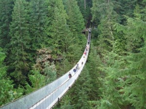 north vancouver sightseeing limo tour